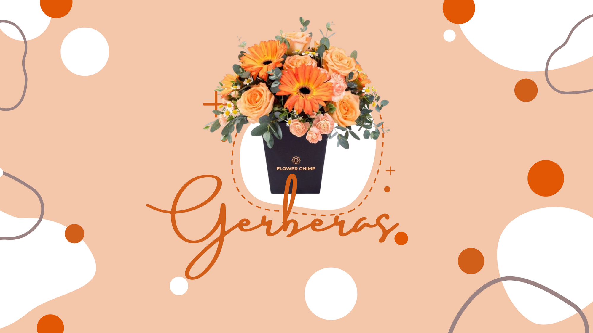 Gerbera Flower Bouquets_gerberas-flower-delivery