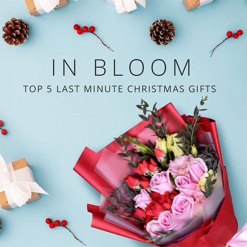 Top 5 Last Minute Christmas Gifts
