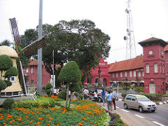 flowers in malacca