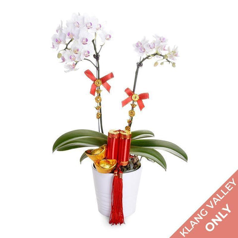 flowers_vase Bright Delight Orchid - Chinese New Year Special