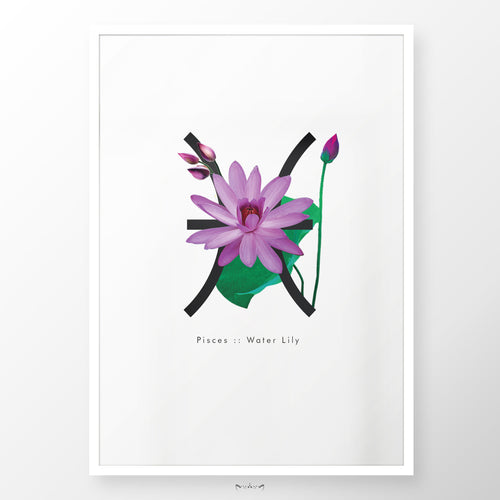 Zodiac Flowers | PISCES :: Water Lily