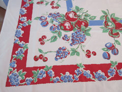 Unwashed Primary Fruit on Red Blue Sheeting Vintage Printed Tablecloth (65 X 48)
