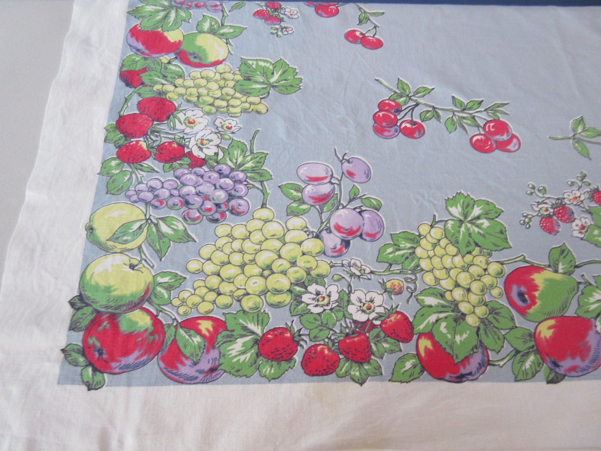Cute Fruit on Steel Blue Gray Vintage Printed Tablecloth (53 X 48)