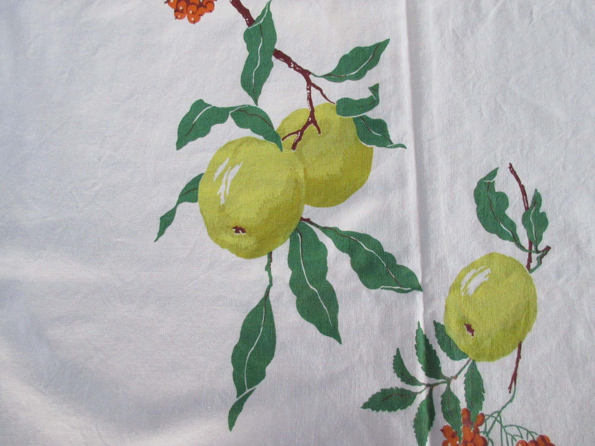 Wilendur Golden Delicious Apple Fruit CUTTER Vintage Printed Tablecloth (52 X 51)