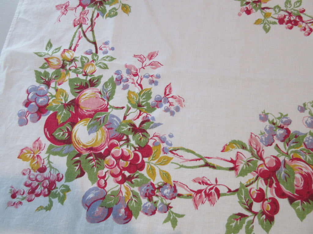 Watercolor Fruit on Linen Vintage Printed Tablecloth (50 X 48)