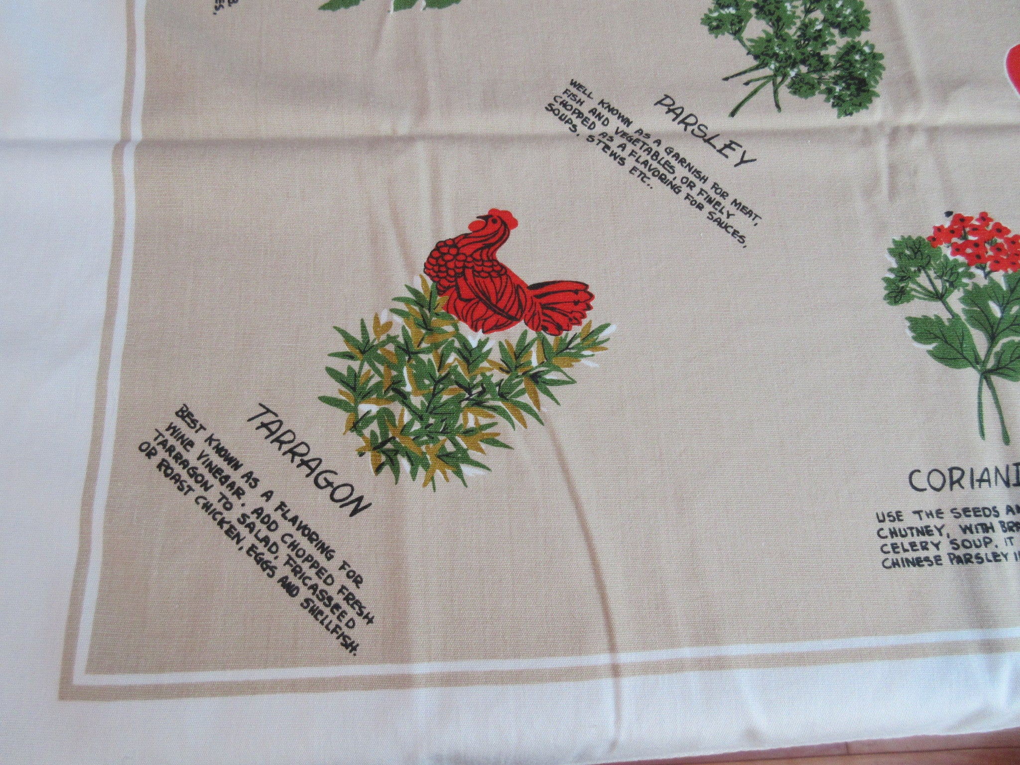 Cooking Herbs Herbal Information on Tan Novelty Vintage Printed Tablecloth (52 X 48)