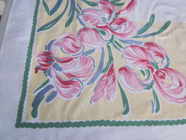 Giant Pink Iris on Yellow Floral Vintage Printed Tablecloth (66 X 51)