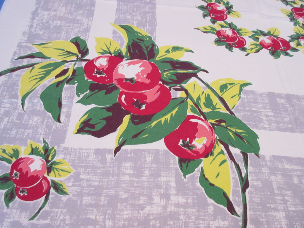 Fall Red Green Apples on Gray Fruit Vintage Printed Tablecloth (54 X 48)