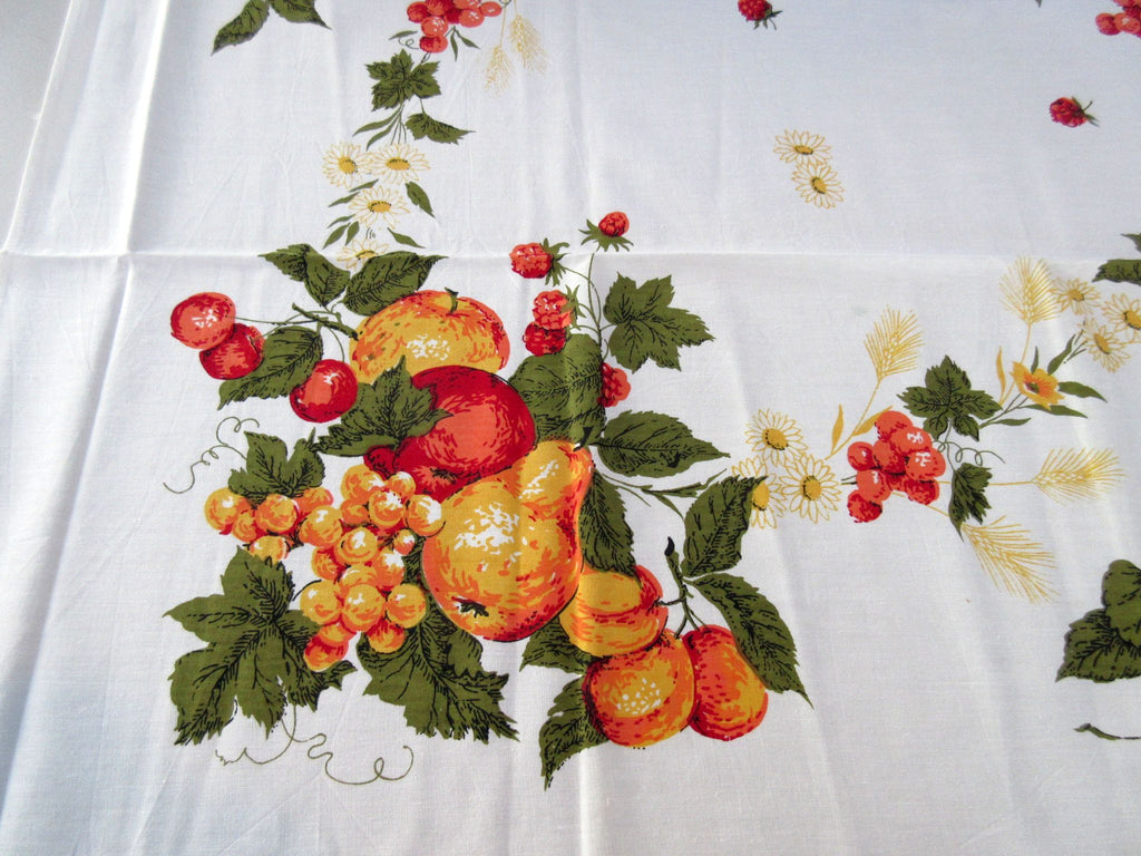 Orange Fruit Sheeting MWT Vintage Printed Tablecloth (48 X 48)