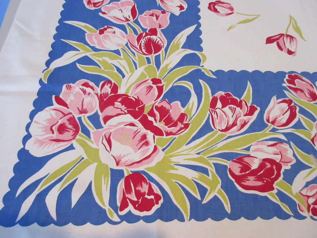 Red Pink Tulips on Blue Cutter? Floral Vintage Printed Tablecloth (52 X 46)