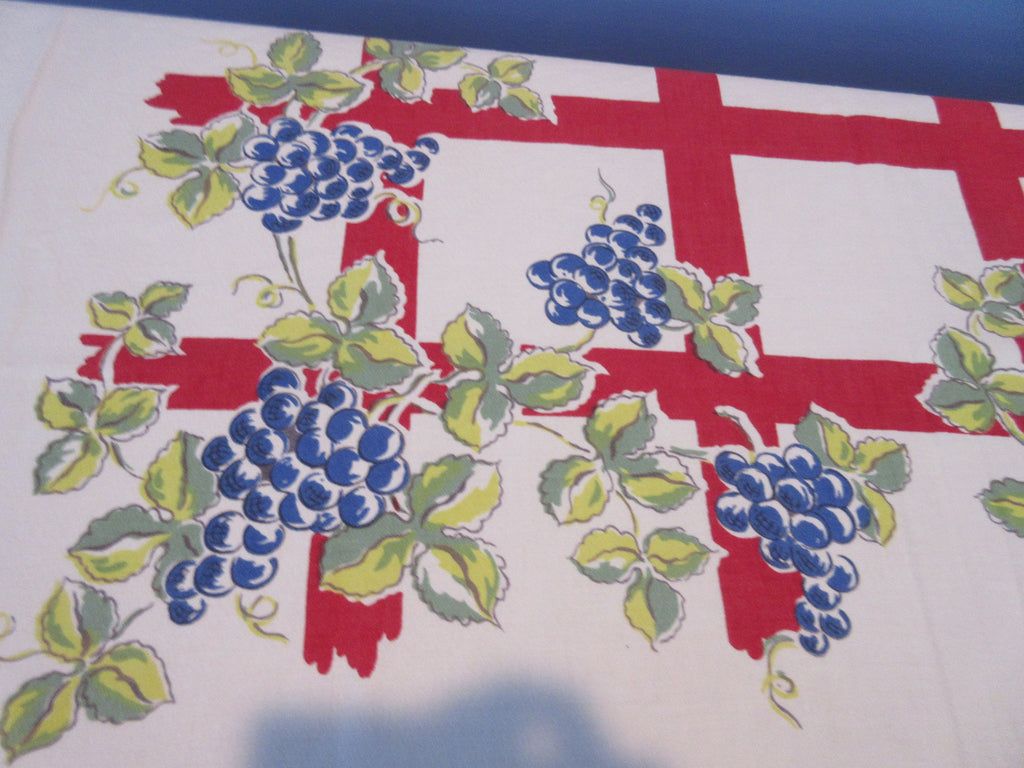 Primary Blue Green Grapes Red Trellis Vintage Printed Tablecloth (49 X 46)