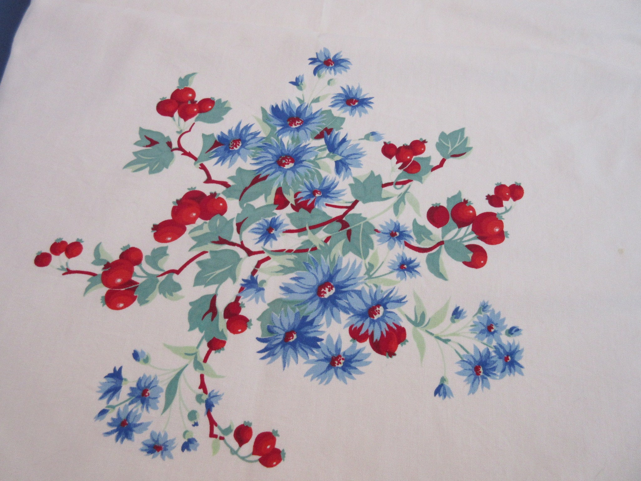 Wilendur Blue Daisies Red Rosehips Floral Vintage Printed Tablecloth (67 X 54)