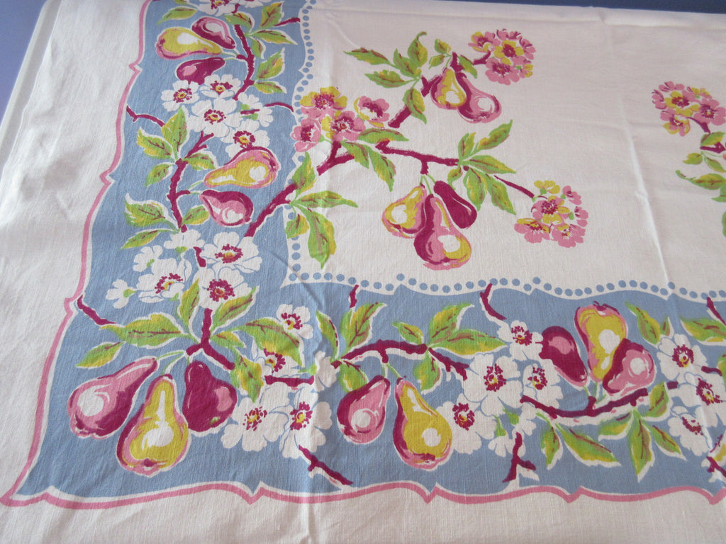 Damaged Glorious Pears on Blue Gray Fruit Vintage Printed Tablecloth (50 X 50)