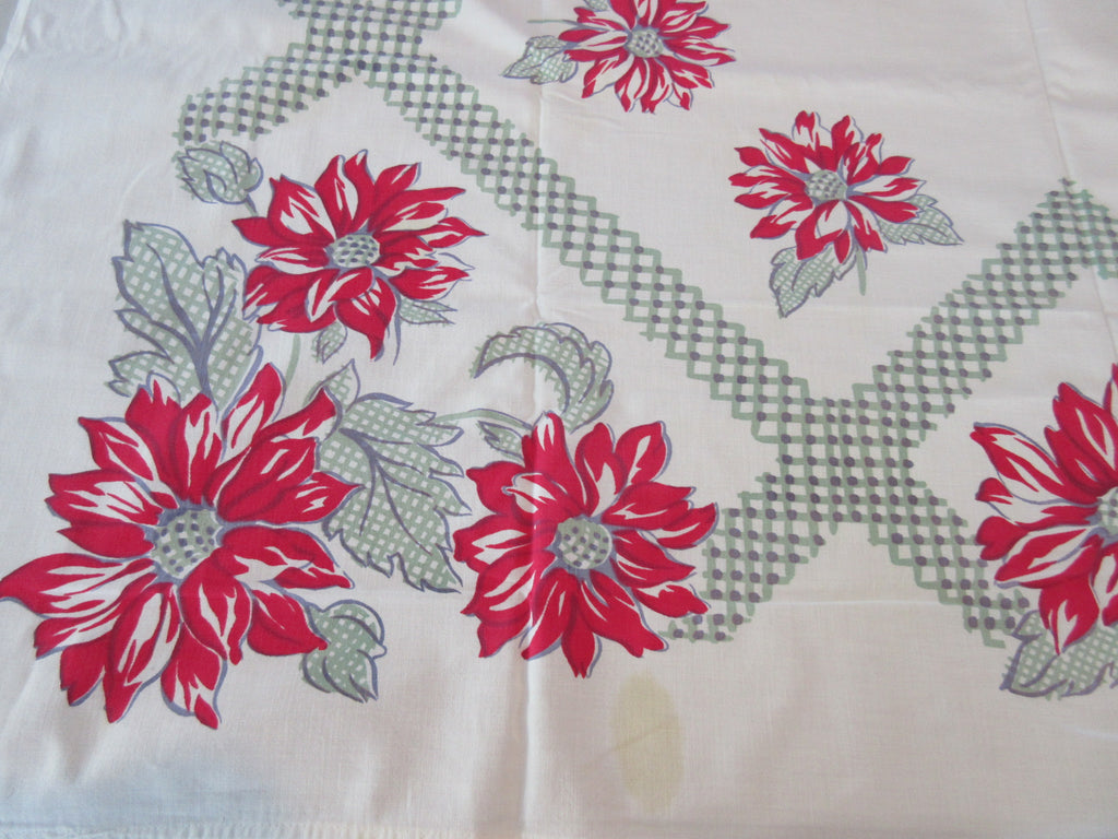 Red Dahlias on Green Gingham TLC Floral Vintage Printed Tablecloth (50 X 47)