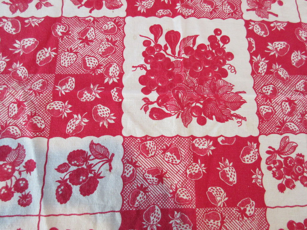 Red Fruit Squares Rustic Cutter? TLC Vintage Printed Tablecloth (49 X 45)