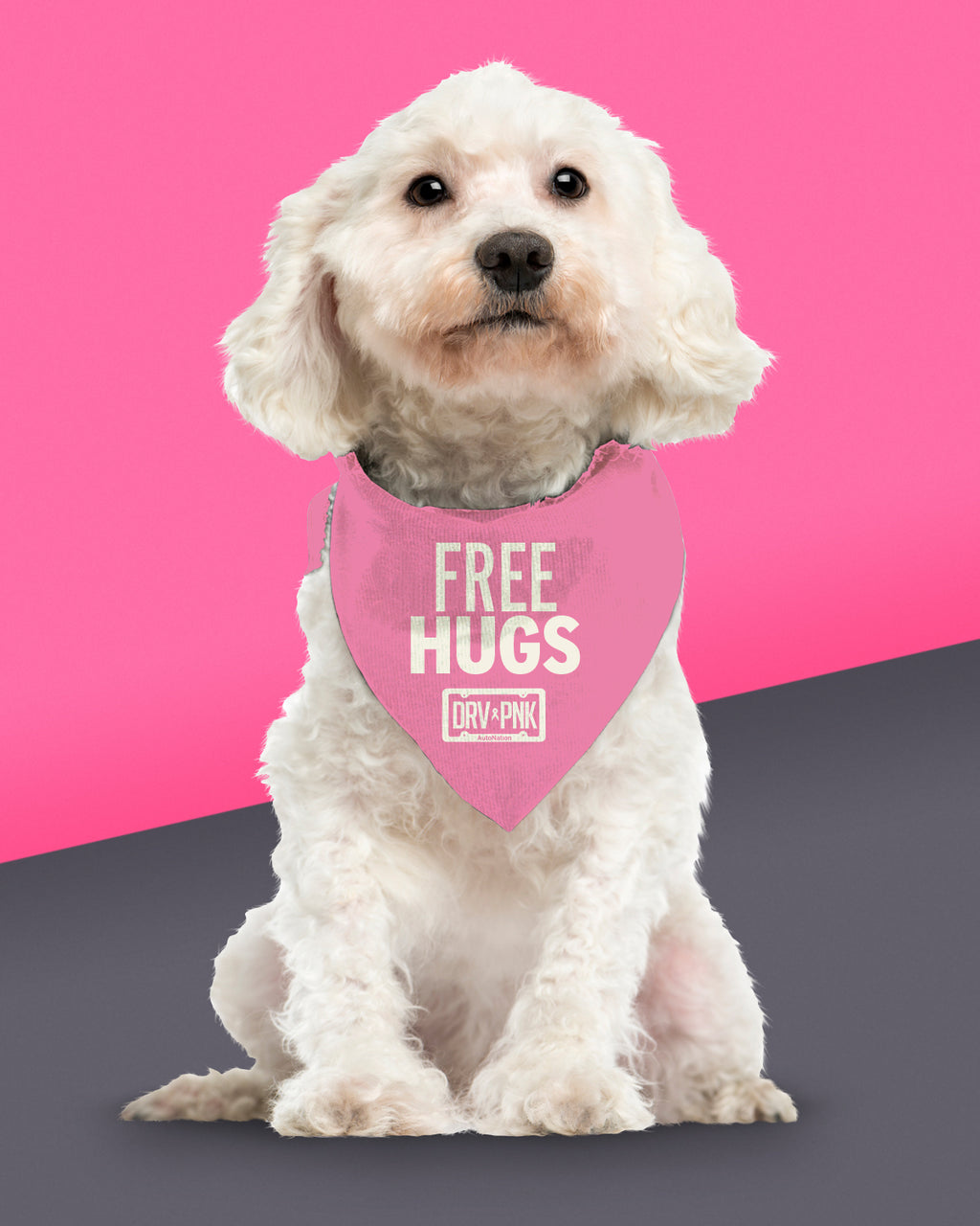 Pet Bandana - Free Hugs