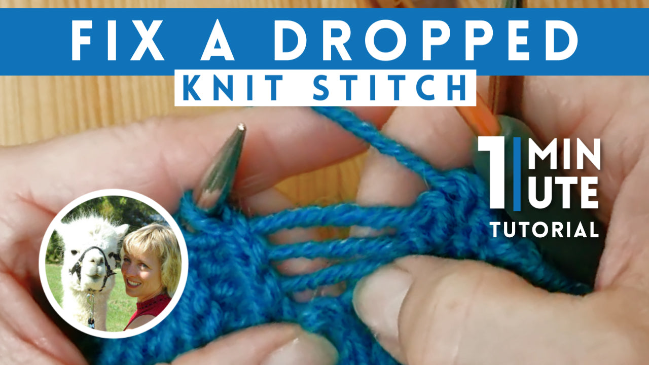 How To Fix a Dropped Stitch