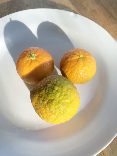 Curafora Segentrange mandarin sized fruit on a plate