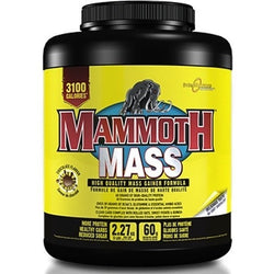 Interactive Nutrition Mammoth Mass 2.2kg (7 servings) / Banana Mass Gainers  www.nutri4u.co.uk - 1