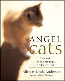 Angel Cats Divine Messengers of Comfort
