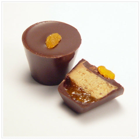 Ococoa Chocolate Cashew Apricot Nut Butter Cup