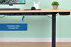 Sit-to-Stand Desk Frame - Single Motor