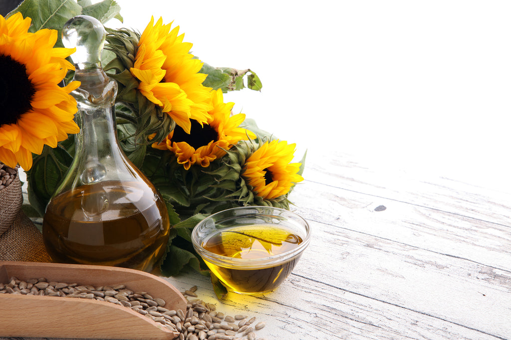 Benefits of using Sunflower Essential Oil