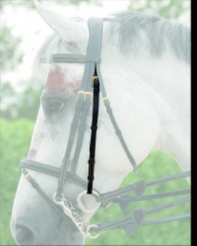 DYON DOUBLE BRIDLE CHEEK PIECE