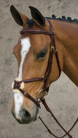 DYON FIGURE EIGHT BRIDLE