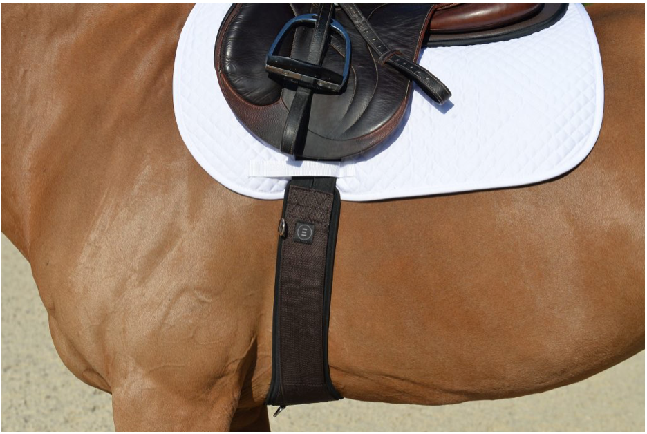 EQUIFIT ESSENTAIL SCHOOLING GIRTH