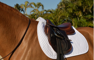 EQUIFIT ESSENTAIL SADDLE PAD