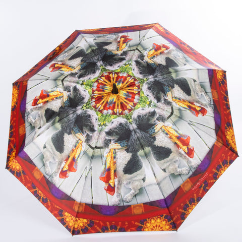 'Custom Umbrella' Custom Designs Lexie