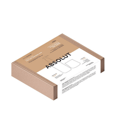 L'Oreal Professionnel Series Expert Absolut Repair Holiday Pack