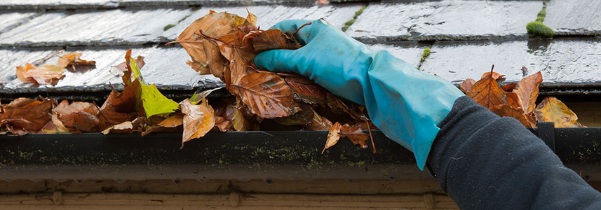 Those Phenomenal Autumn Leaves That Looked So Vibrant A Couple Of Weeks Ago  Are Now Sludging Up Our Walkways And Gutters. Keeping Your Roof Gutters  Clear Of ...