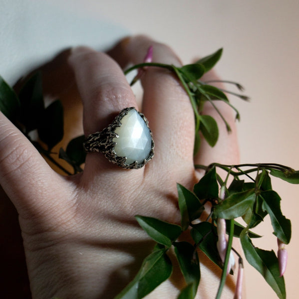 Wylderness Ring - White Moonstone - Size 6 - Ready to ship