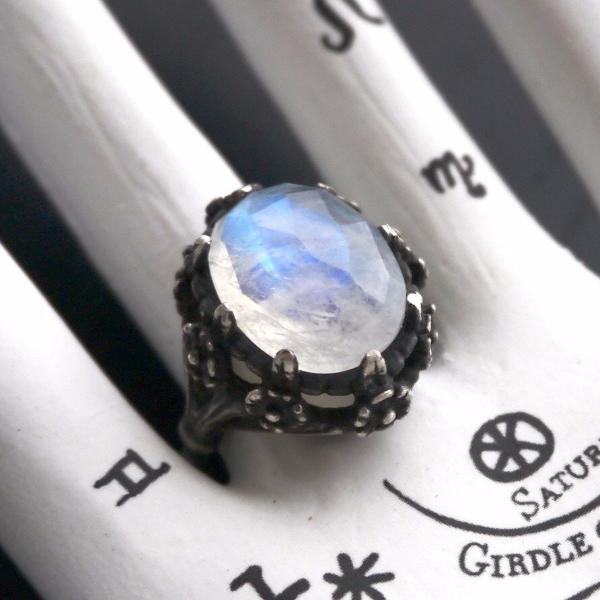 Galactic Forest Ring