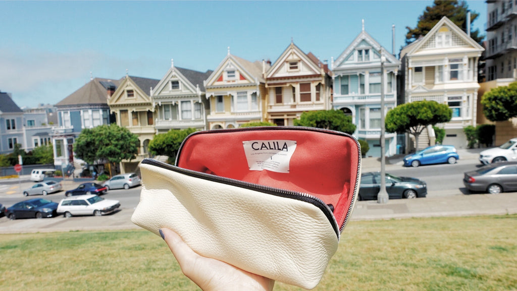 San Francisco Houses Makeup Bag Travel Kit