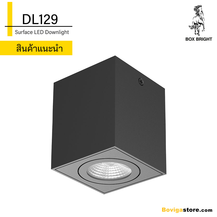 DL129 | LED Surface Downlight