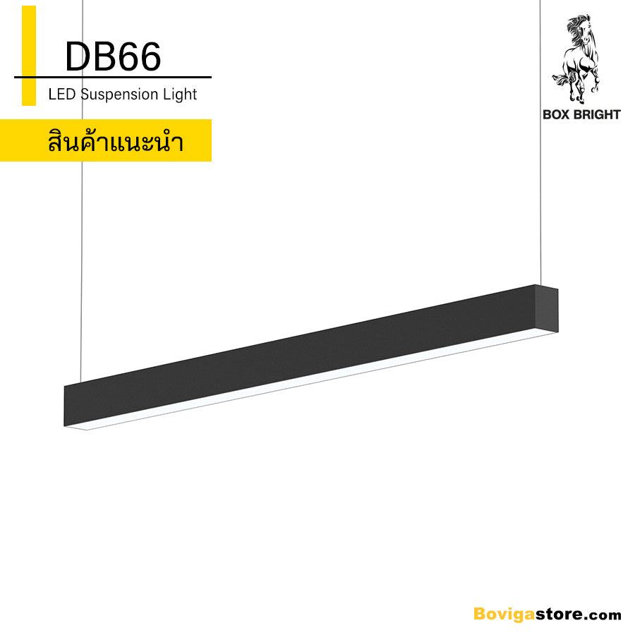 DB66 | LED Suspension Light