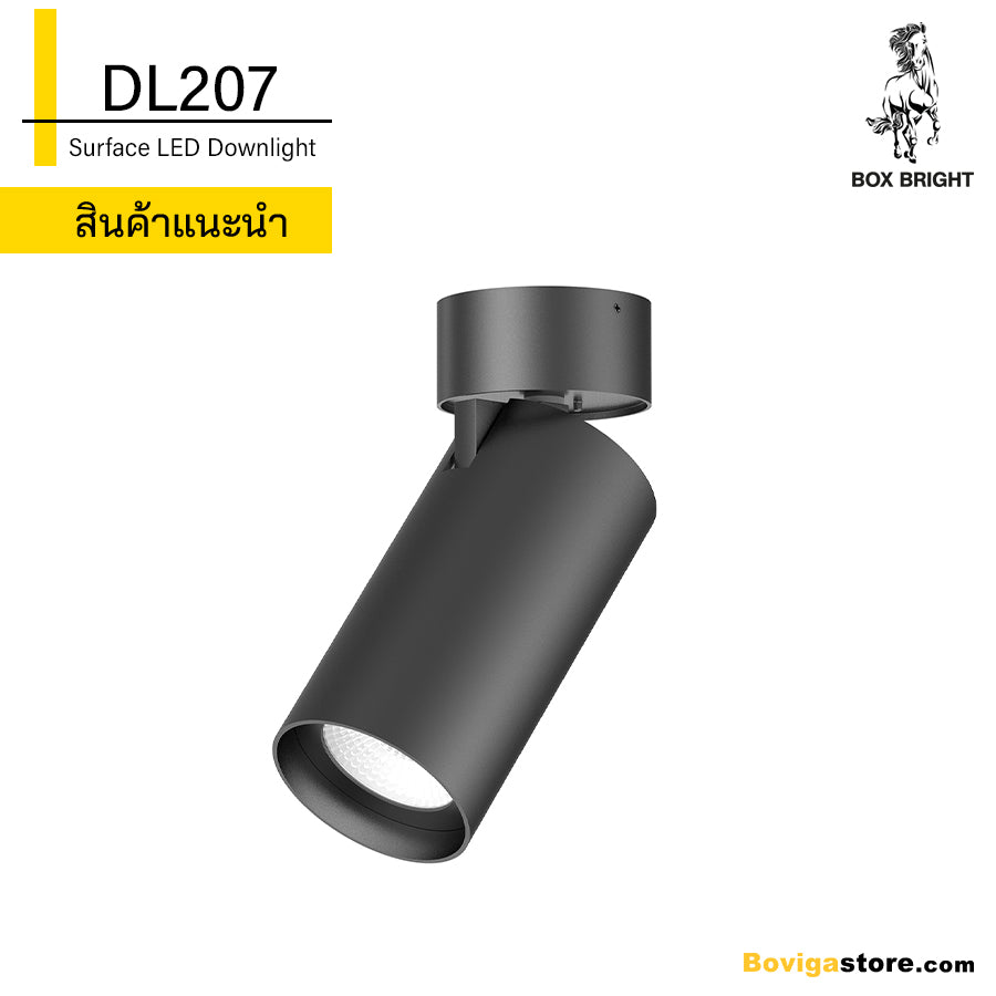 DL207 |  LED Surface Downlight