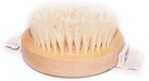 Hand Held Body Brush