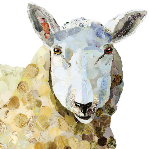 Stella Sheep Print