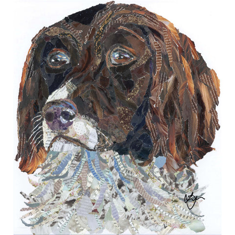 Springer Spaniel Dog Card