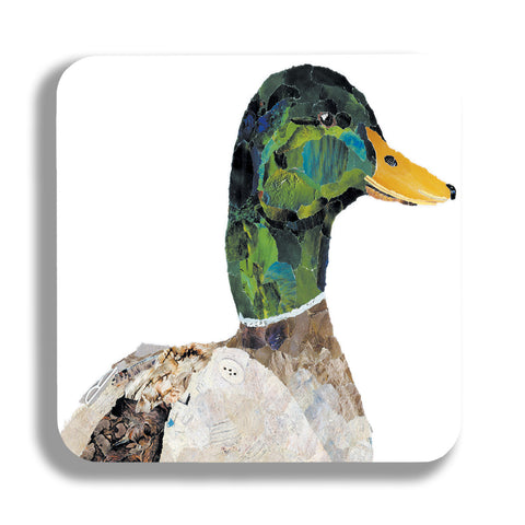 Dominic the Duck Coaster