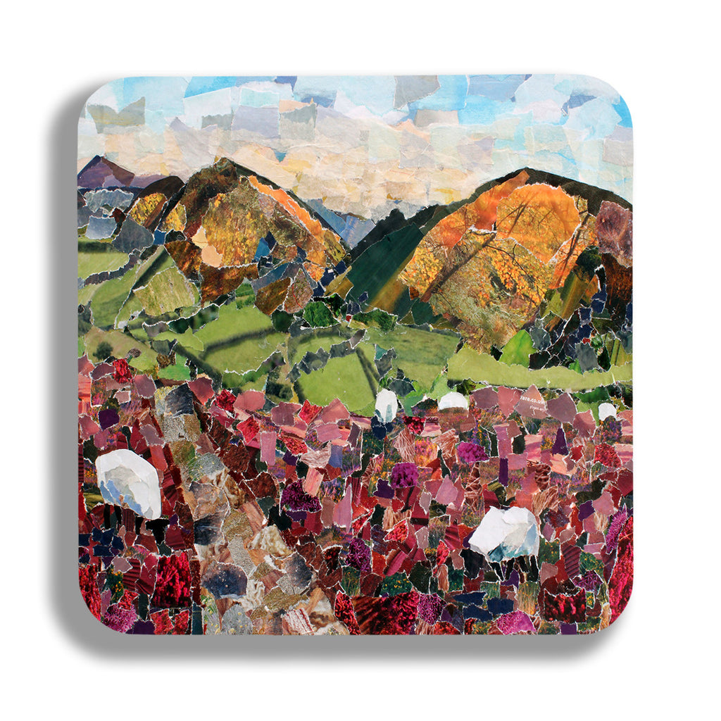 Stretton Hills Coasters