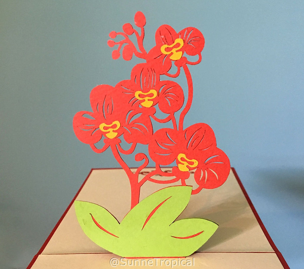 Pop up card Phalaenopsis Orchid 4.75 inch (FL010-1212)
