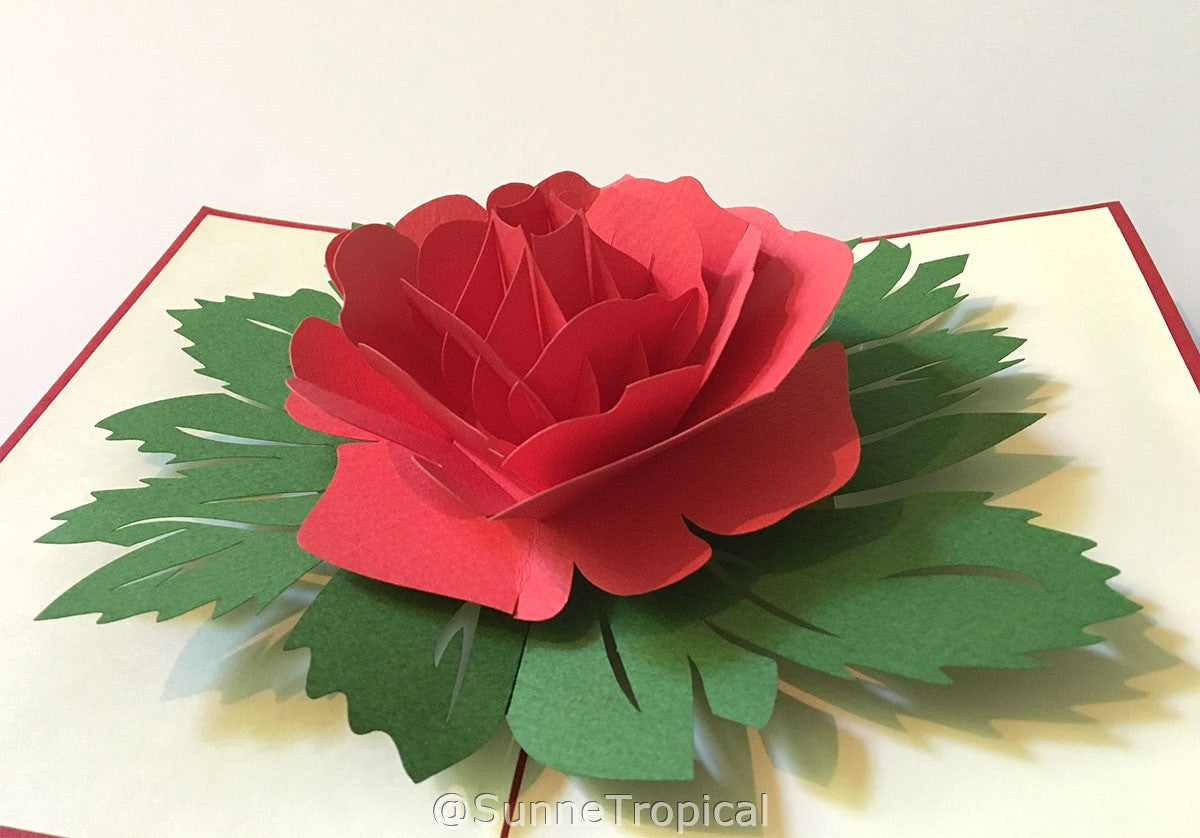 Pop Up Card Garden Rose Flower 475 X 7 Inch Fl014 1218