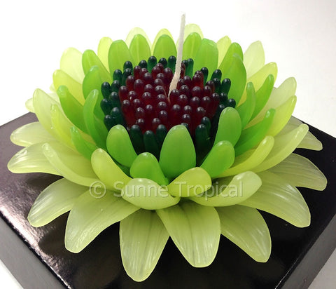 Flower Candles 5 Inch - Gerbera (Dark & Light Green)