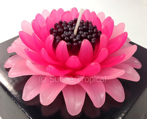 Flower Candles 5 Inch - Gerbera (Dark & Light Pink)
