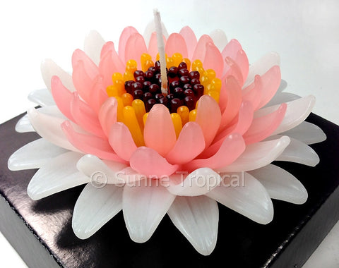 Flower Candles 5 Inch - Gerbera (White Light Pink)